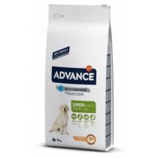 Advance (Эдванс) Maxi Junior корм для молодых собак с курицей 14 кг