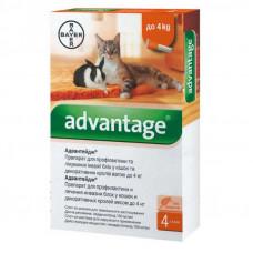 Капли Адвантейдж (Advantage) от блох и клещей для кошек до 4 кг, Bayer