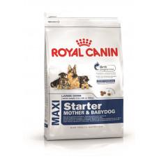 Royal Canin Maxi Starter для щенков до 2 мес