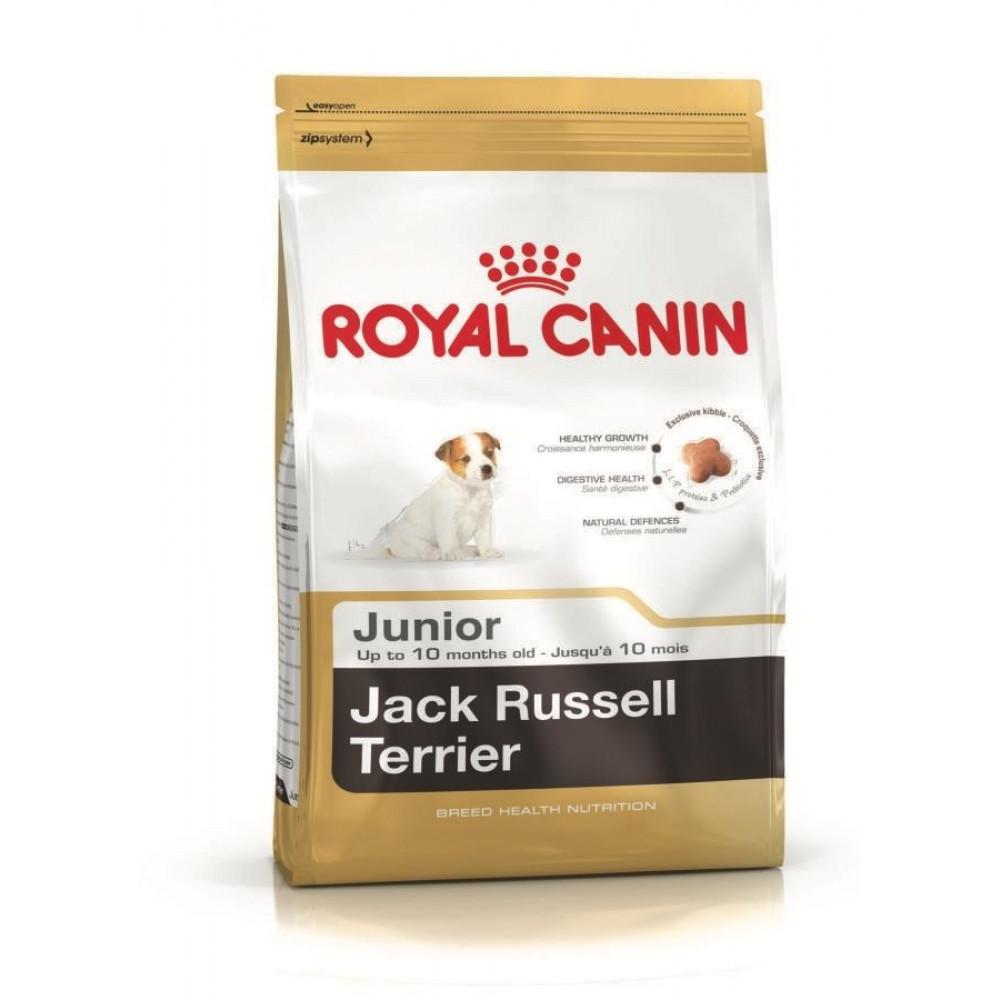 Royal Canin Jack Russell Junior Корм для щенков джек рассел
