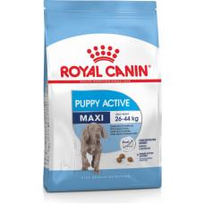 Royal Canin Maxi Junior Active для щенков крупных пород до 15 мес