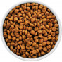 Сухой корм для собак (509)